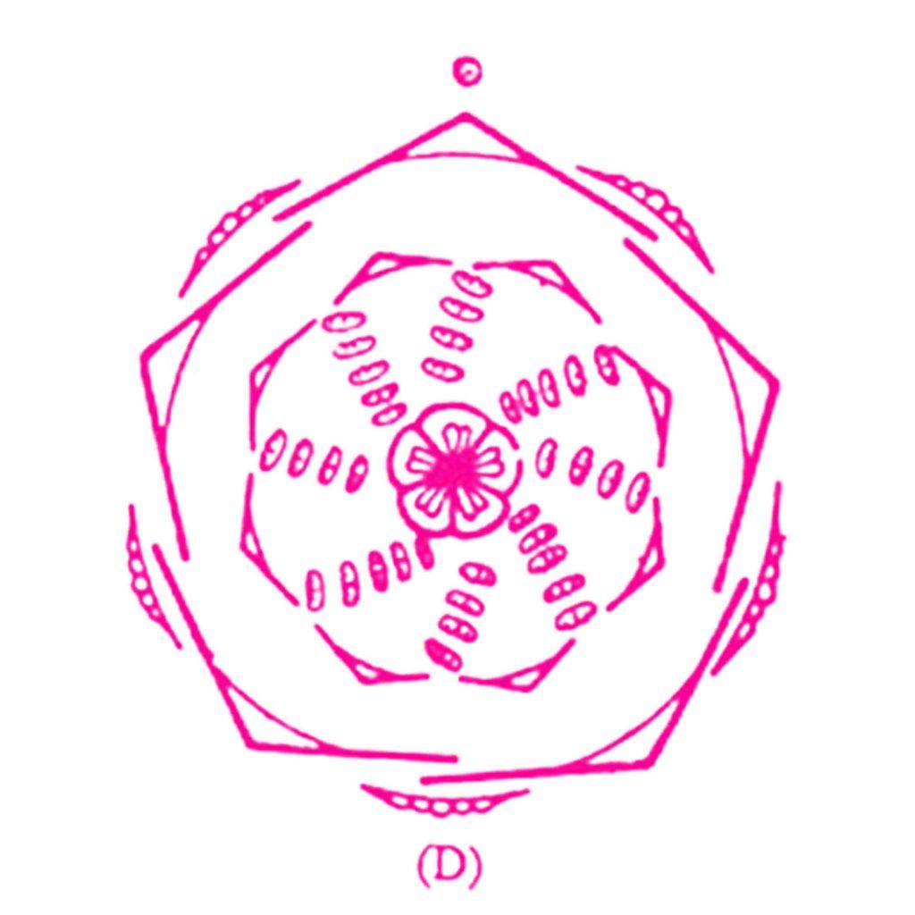 bloemdiagram Anemoon donkerroze